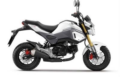 Noleggio lungo termmine Honda MSX 125